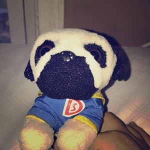 Other - This is a new pug